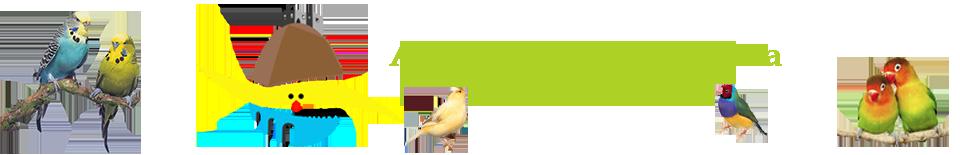 Associacão Ornitologica de Barcelos